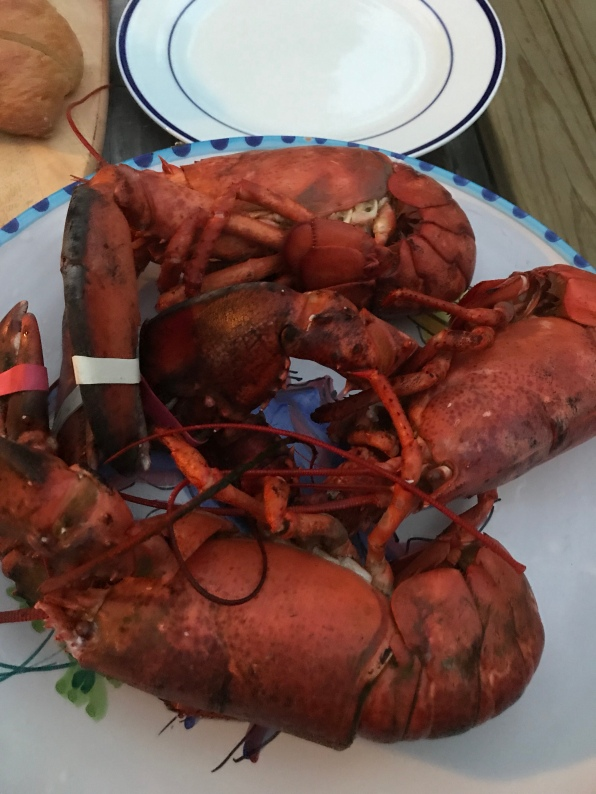 Cape Cod lobsters
